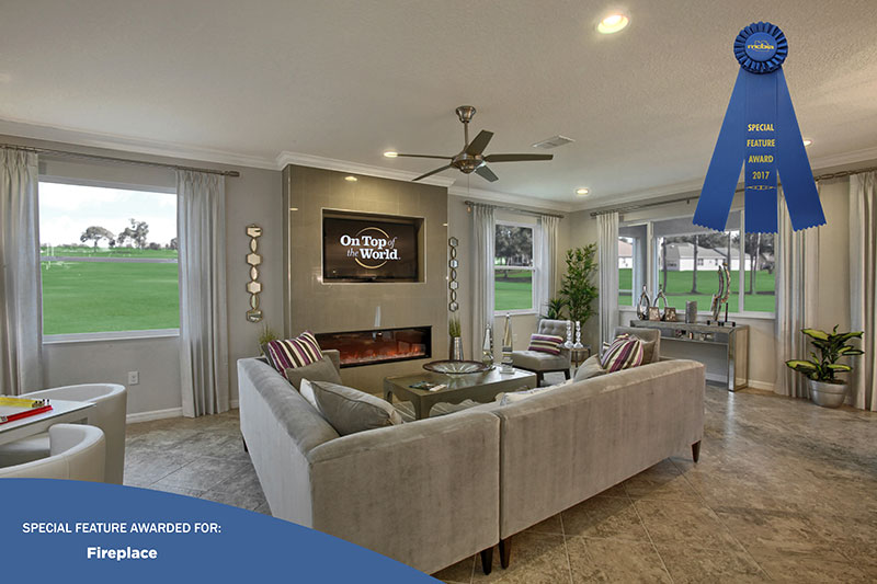 2017 Parade of Homes Award - Fire place